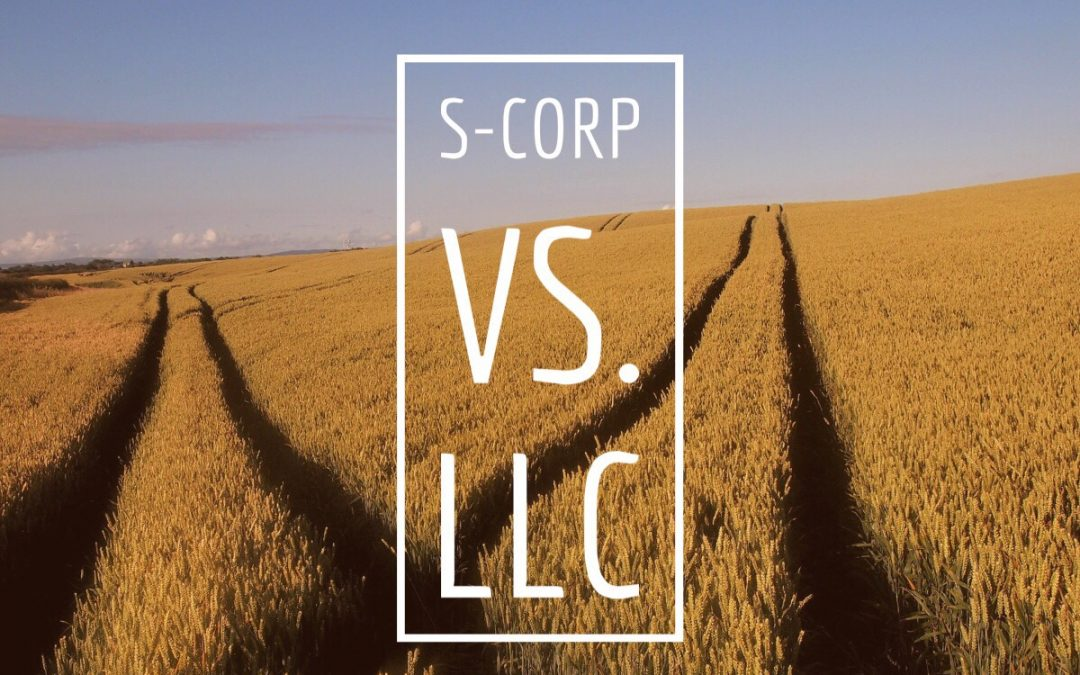 What's the difference between an S-Corp and an LLC?